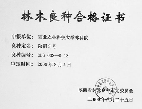 No.3 Shan Tong Qualification Certificate